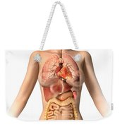 Anatomy Of Female Body With Internal Weekender Tote Bag by Leonello Calvetti