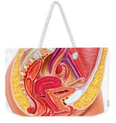 Anatomy Of Female Reproductive System Weekender Tote Bag