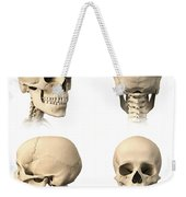 Anatomy Of Human Skull From Different Weekender Tote Bag
