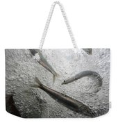 Anchovies,engraulis Moradx, Swim Weekender Tote Bag
