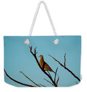 And A Dove In A Tree Weekender Tote Bag