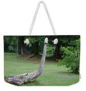 And The Serpent Was Swallowed Up Weekender Tote Bag