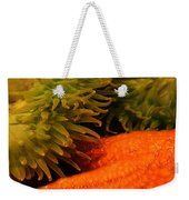 Anenome And Starfish Weekender Tote Bag