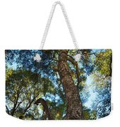 Angeles Sun -beautiful Tree With Sunburst In Angeles National Forest In The San Gabriel Mountails Weekender Tote Bag