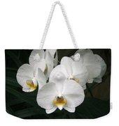Angelic Delight Weekender Tote Bag