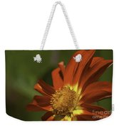 Angled To The Sun Weekender Tote Bag