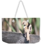 Angry Bird Bearded Reedling Juvenile Weekender Tote Bag