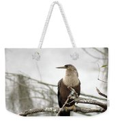 Anhinga On A Misty Morning Weekender Tote Bag