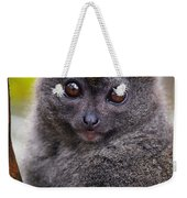 Animals 22 Weekender Tote Bag