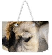 Animals Can Be Beautiful Weekender Tote Bag