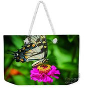 Anise  Swallowtail Butterfly Weekender Tote Bag