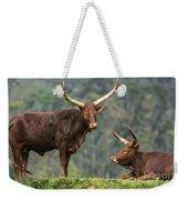 Ankole Longhorns Weekender Tote Bag