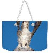 Anna's Hummingbird Tail Display Weekender Tote Bag