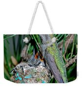 Annas Hummingbird With Young Weekender Tote Bag