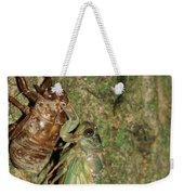 Annual Cicada Weekender Tote Bag