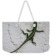 Anole On Stucco Weekender Tote Bag
