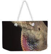 Anolis Lizard Portrait Peru Weekender Tote Bag