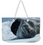 Antarctic Leopard Seal On Iceberg Weekender Tote Bag