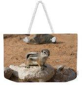 Antelope Ground Squirrel Weekender Tote Bag