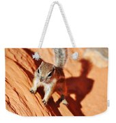 Antelope Ground Squirrel Weekender Tote Bag