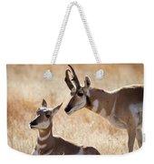 Antelope Love Weekender Tote Bag