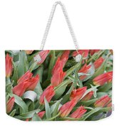 Anticipation Weekender Tote Bag by Juli Scalzi
