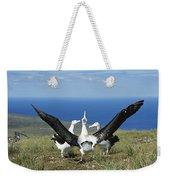 Antipodean Albatross Courtship Display Weekender Tote Bag