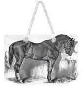 Antique Horse Drawing Weekender Tote Bag