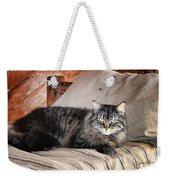 Antiquity Kitty Weekender Tote Bag