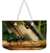 Ants Adventure 2 Weekender Tote Bag
