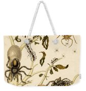 Ants Spiders Tarantula And Hummingbird Weekender Tote Bag by Getty Research Institute