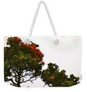 Apapane Atop An Orange Ohia Lehua Tree  Weekender Tote Bag