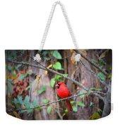 Appalachian Cardinal Weekender Tote Bag