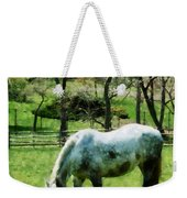 Appaloosa In Pasture Weekender Tote Bag
