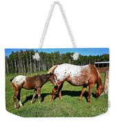 Appaloosa Mamma And Baby Weekender Tote Bag