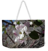 Apple Blossoms 3 Weekender Tote Bag