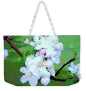 Apple Blossoms In The Spring - Painting Like Weekender Tote Bag