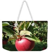 Apple Picking Weekender Tote Bag