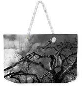 Apple Tree Bw Weekender Tote Bag