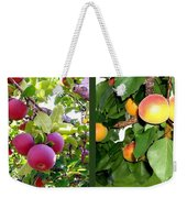 Apples And Apricots Weekender Tote Bag by Will Borden