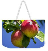 Apples On Tree Weekender Tote Bag