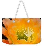 Apricot Glow Weekender Tote Bag