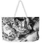 April Rose Bw Palm Springs Weekender Tote Bag