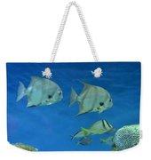 Aquatic Blues Weekender Tote Bag