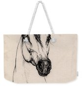 Arabian Horse Drawing 29 Weekender Tote Bag