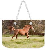 Arabian Horse Running Free Weekender Tote Bag
