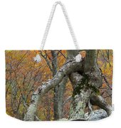 Arboreal Architecture Weekender Tote Bag