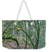 Arch  Bridge Through Trees Weekender Tote Bag
