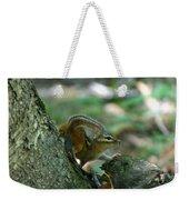 Arched Chipmunk Weekender Tote Bag