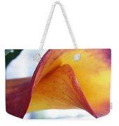 Archimedes Inspiration Weekender Tote Bag